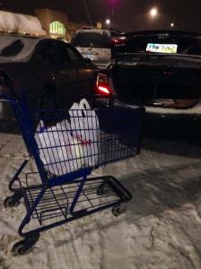 Empurrar carrinho na neve....ninguém merece...