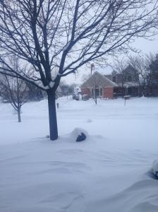 Segunda-feira pela minha,-vista da porta de casa